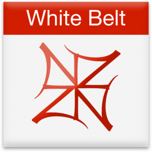 nia white belt icon